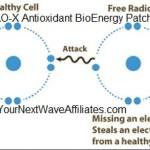 AO-X Antioxidant BioEnergy Patch