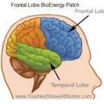 Frontal Lobe BioEnergy Patch